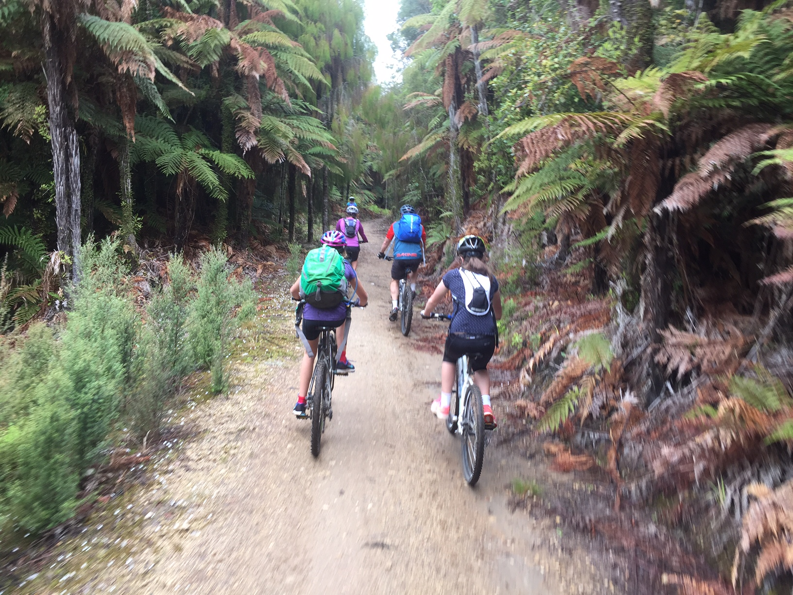 Cycle Trail - New Zealand - Mighway